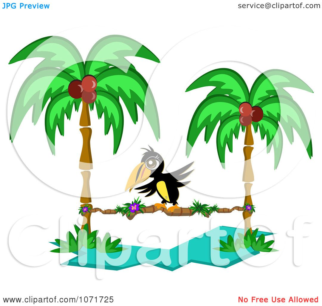Clipart Toucan Walking On A Stick Between Two Coconut Palm Trees ...