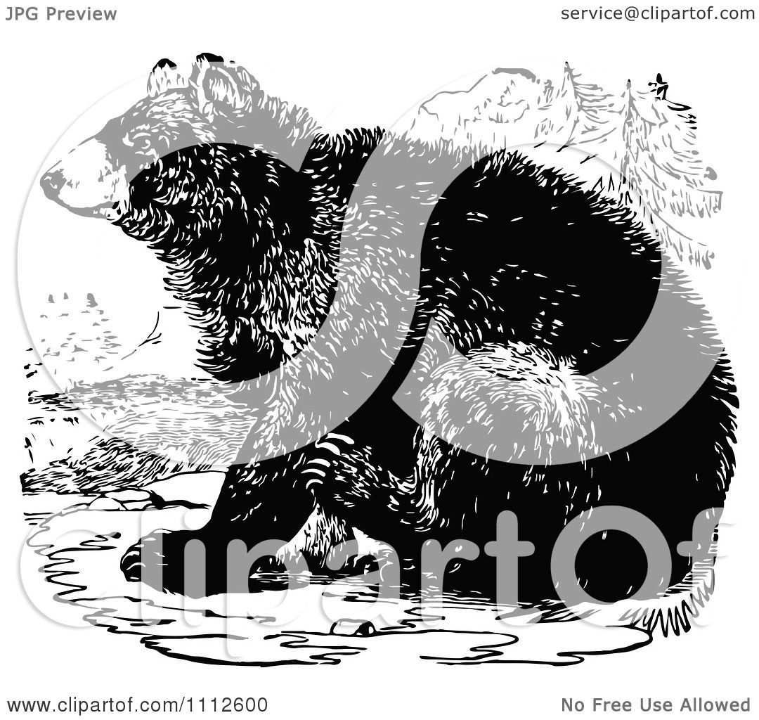 Clipart Vintage Black And White Bear Sitting - Royalty Free Vector Illustration by ...