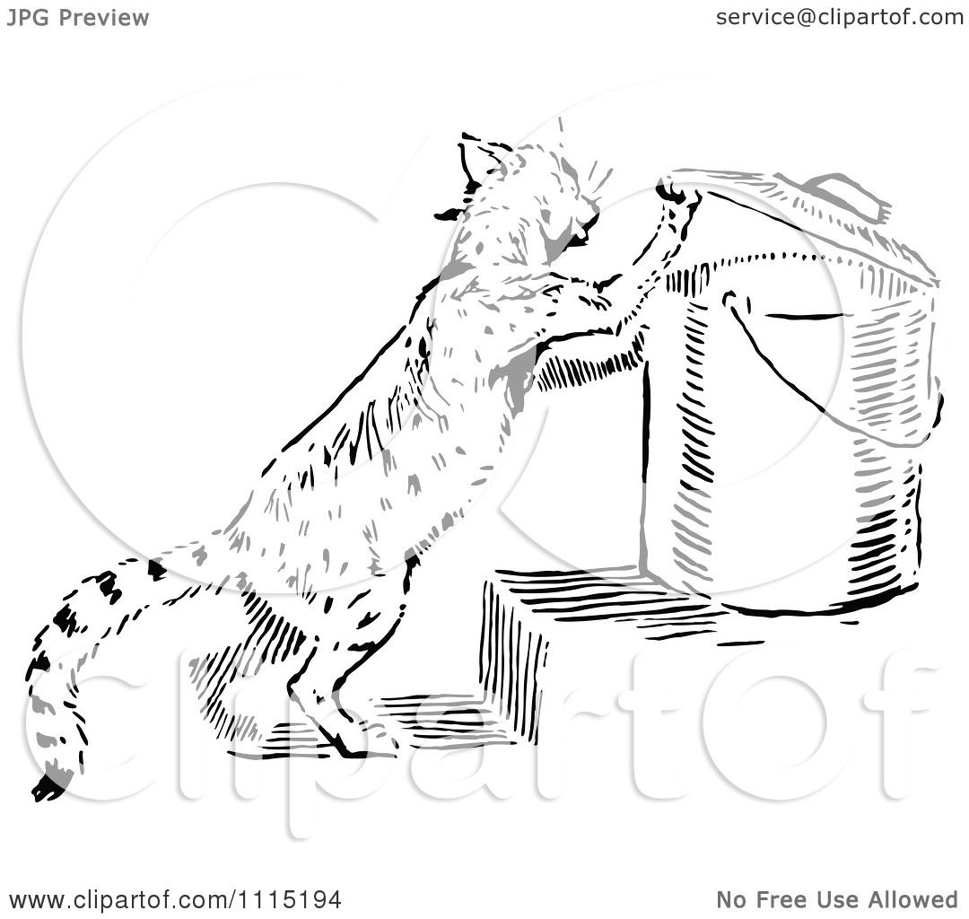 Clipart vintage black and white cat getting into garbage - Clipart illustration ...