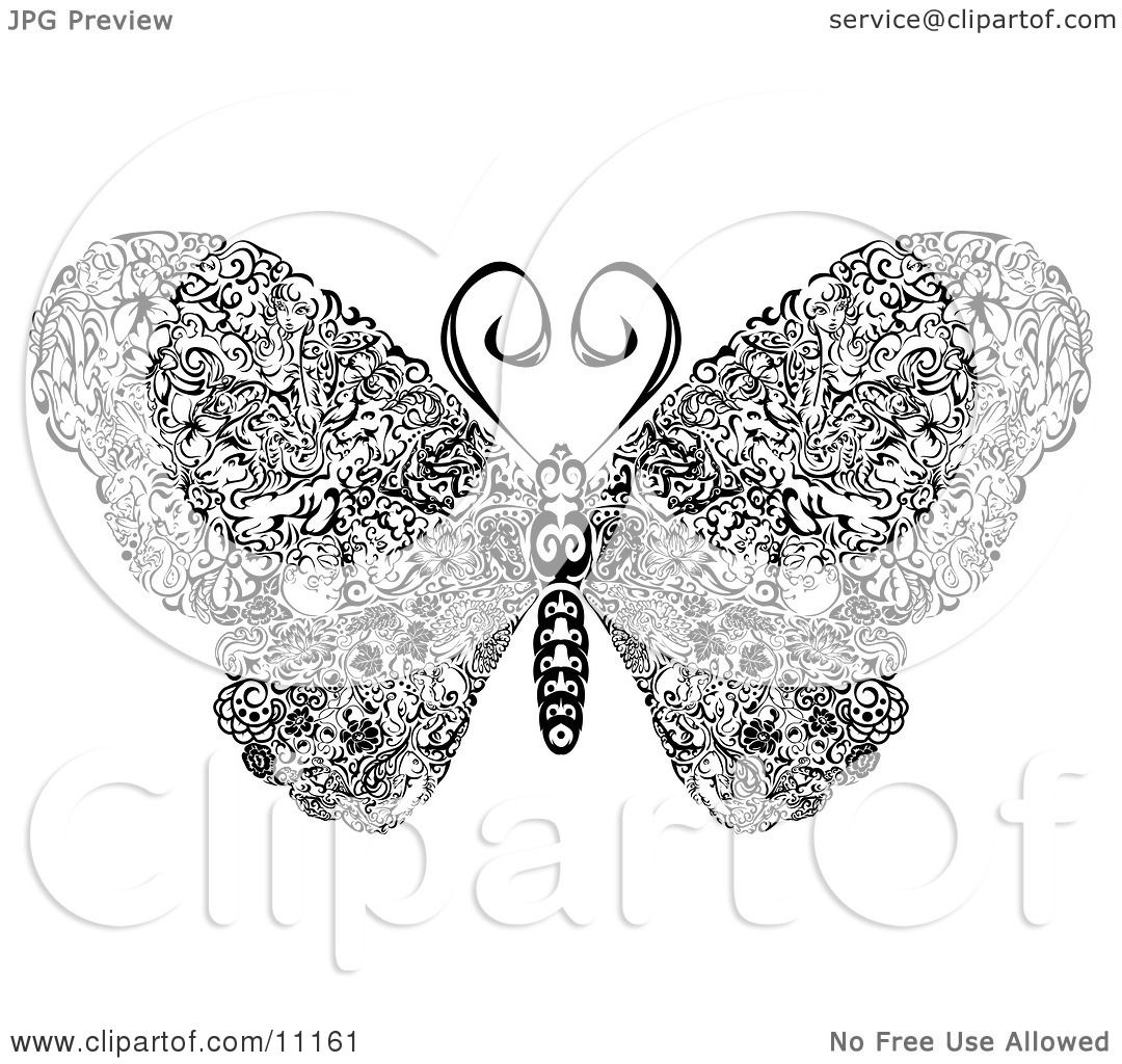 Elegantly Designed Butterfly With Swirls On Its Wings