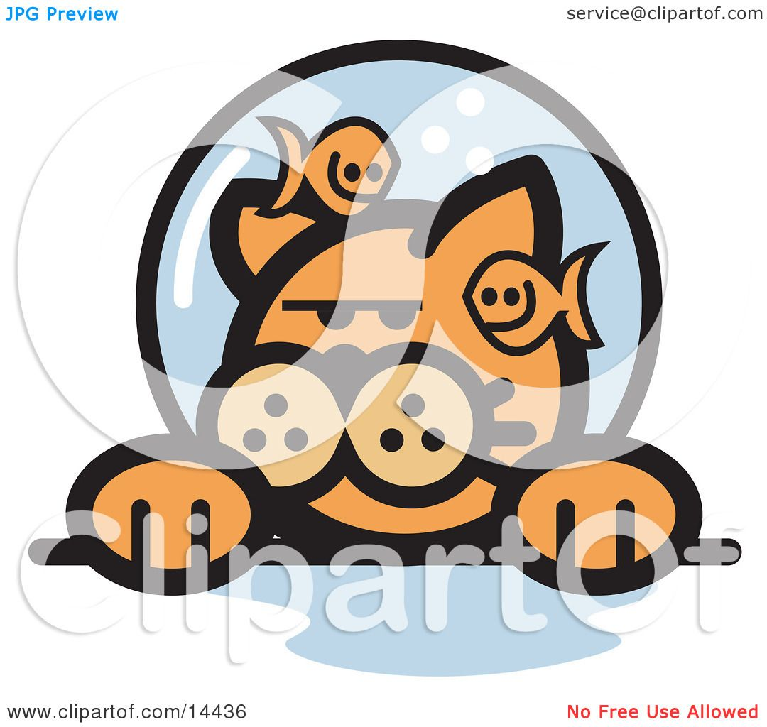 Grumpy Ginger Cat With Fish Making Fun Him Fishbowl Stuck