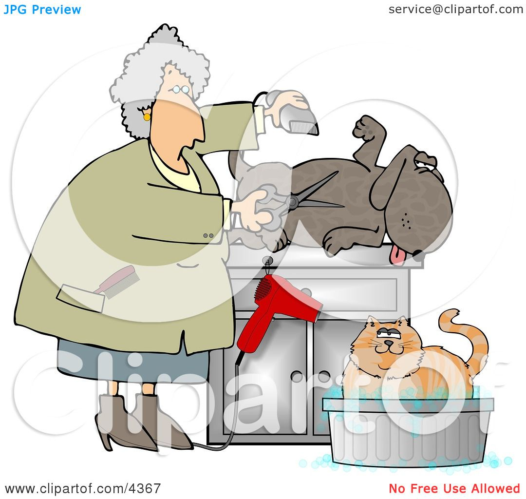 Happy Dog Being Groomed Clipart by djart #4367