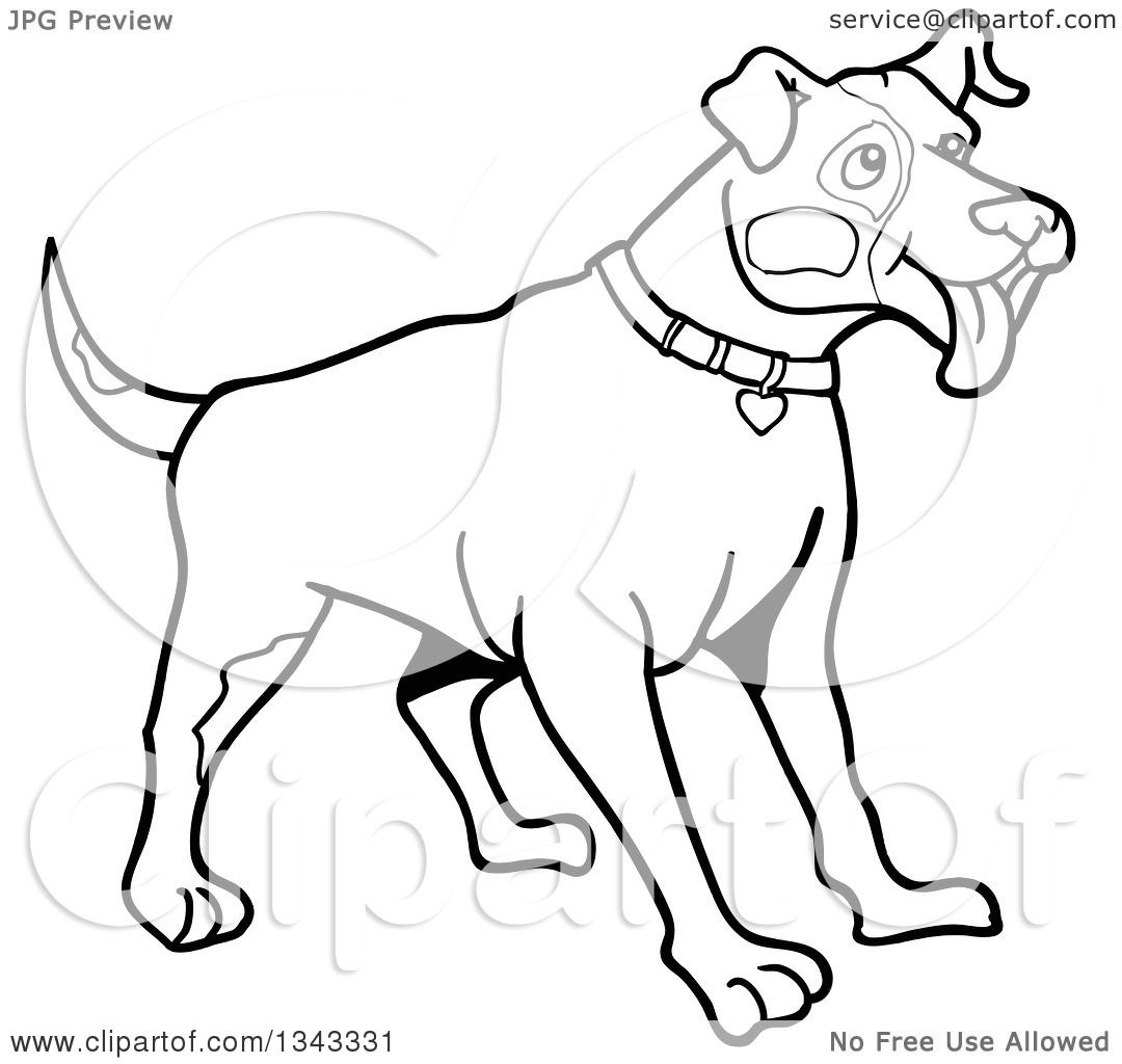 outline pit bull paper Find great deals on ebay for pit bull books shop with confidence.