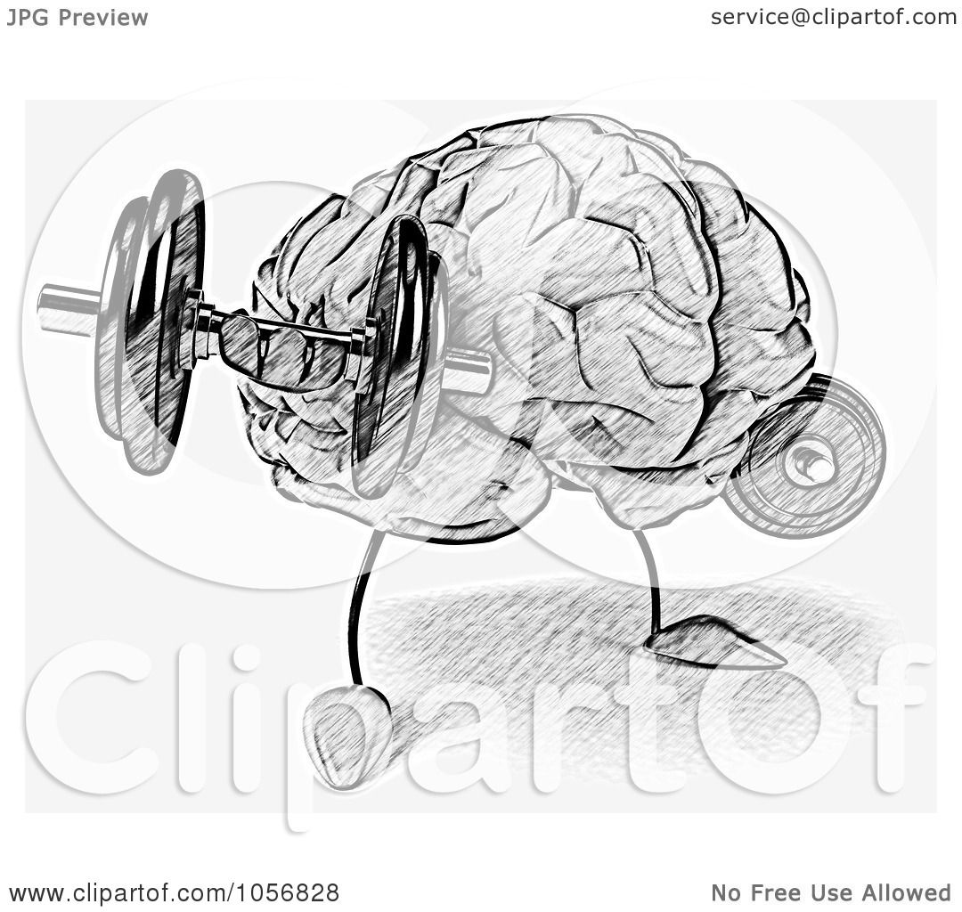 Royalty Free Cgi Clip Art Illustration Of A Sketched Brain