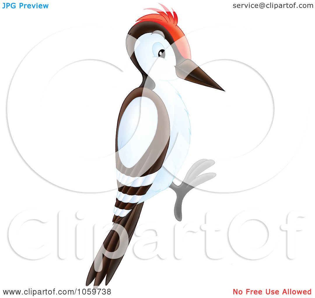 royalty free clip art illustration of a woodpecker by alex bannykh rh clipartof com pileated woodpecker clipart cute woodpecker clipart