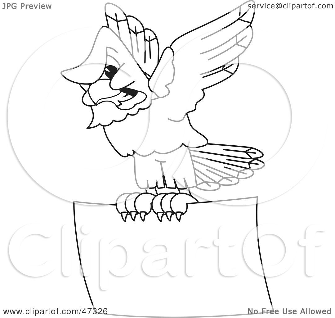 how to draw a hawk flying