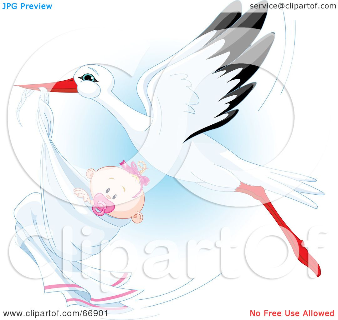 Royalty  Free RF Clipart  Illustration  Of A Beautiful  Stork  Delivery A Baby  Girl
