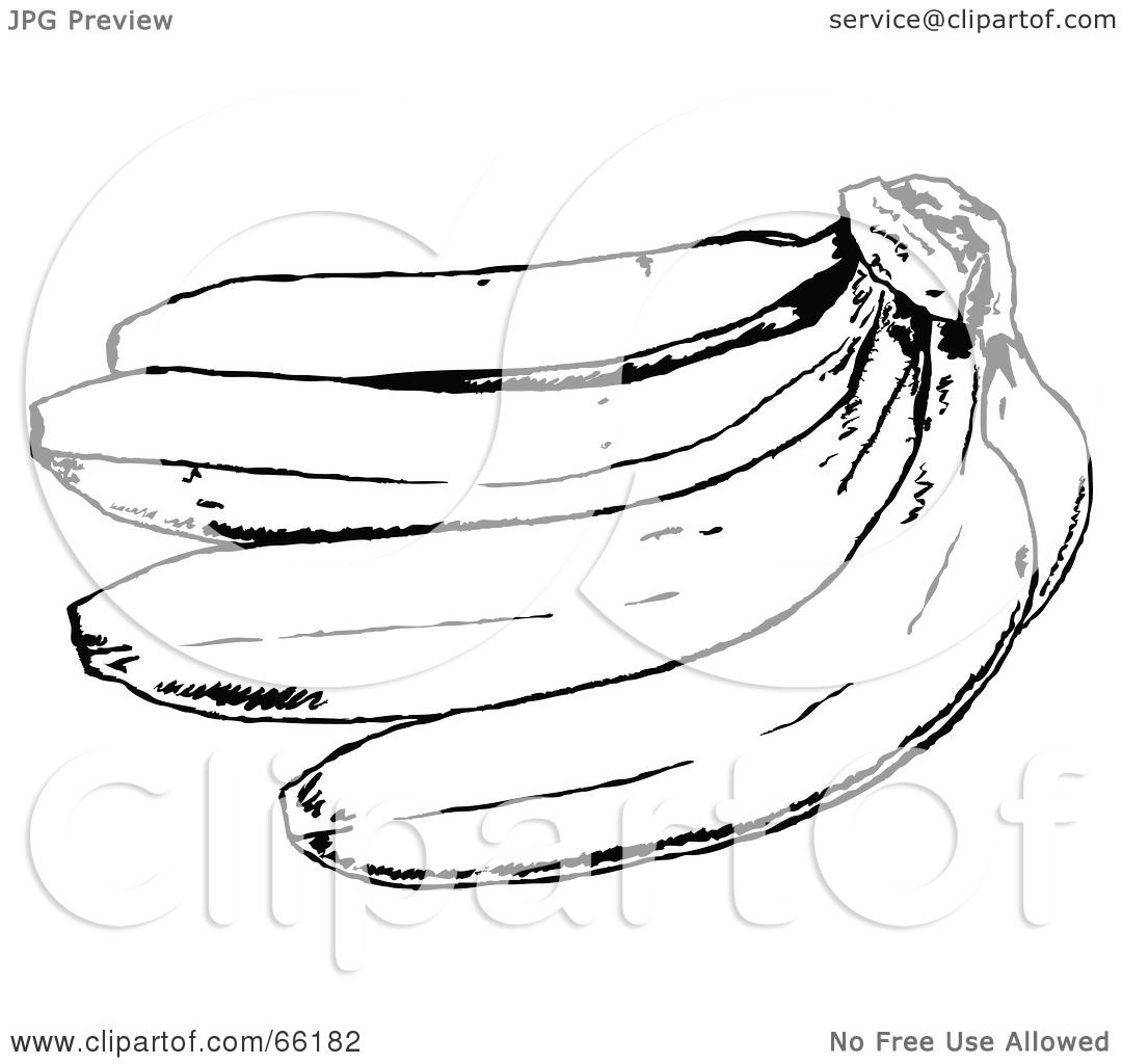 Banana Clip Art Black And White Royalty-Free  RF  Clipart