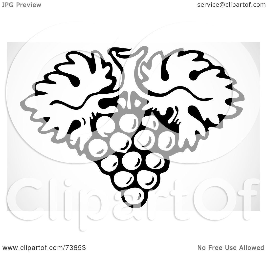 Royalty-Free (RF) Clipart Illustration of a Black And White Grape ...