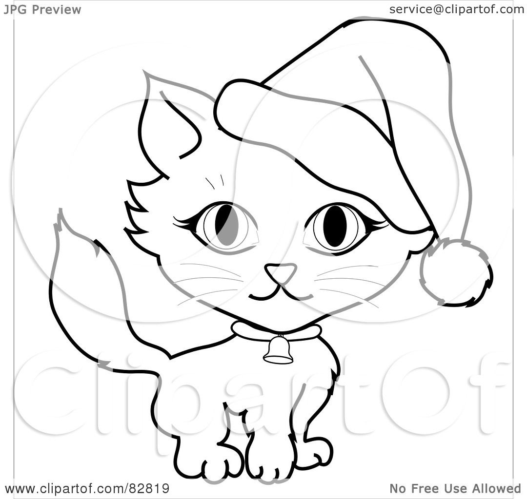 Cat With Santa Hat And Bell