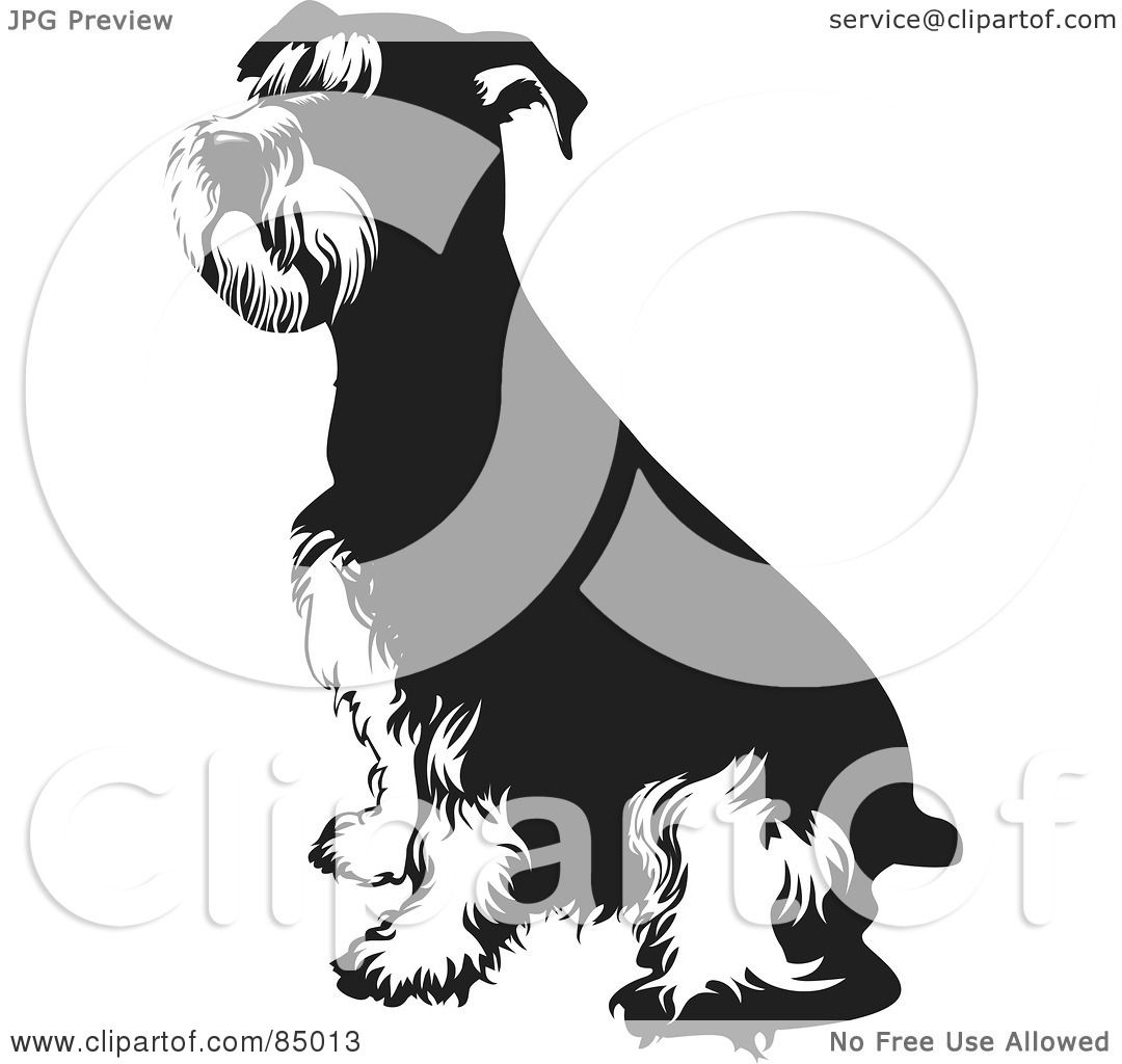 Royalty-Free (RF) Clipart Illustration of a Black And White Seated ...