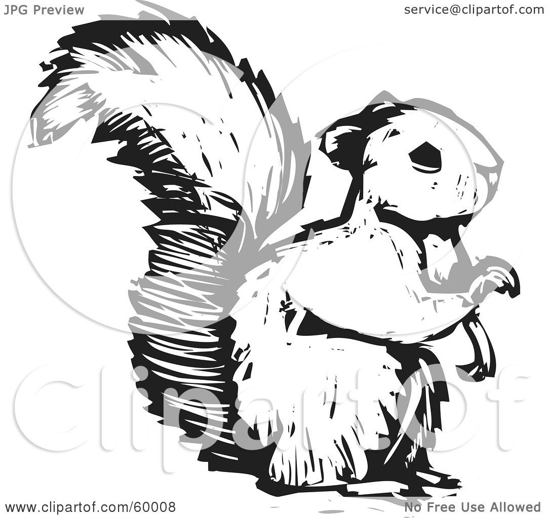 Squirrel images clipart black and white - photo#18