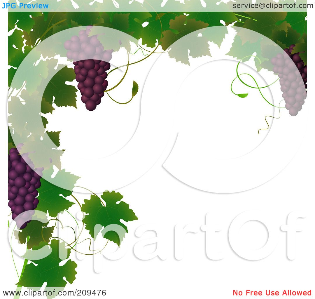 Royalty-Free (RF) Clipart Illustration of a Border Of Grape Vines ...