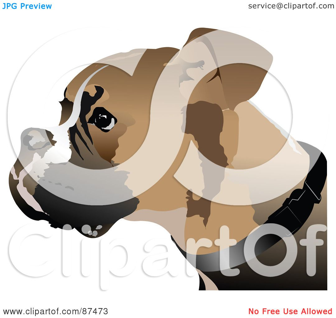 Royalty Free RF Clipart Illustration Of A Boxer Dog Face In