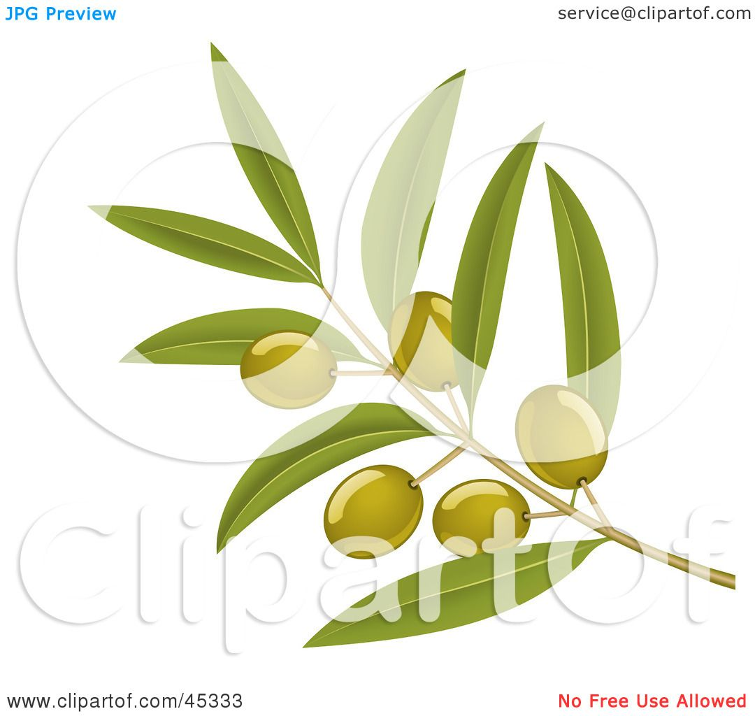 Royalty-free (RF) Clipart Illustration of a Branch Of Organic Green ...