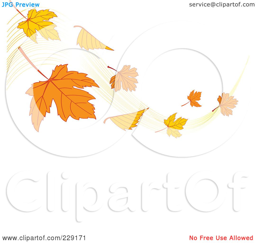 Fall Maple Leaves Clip Art Royalty-free (rf) clipart