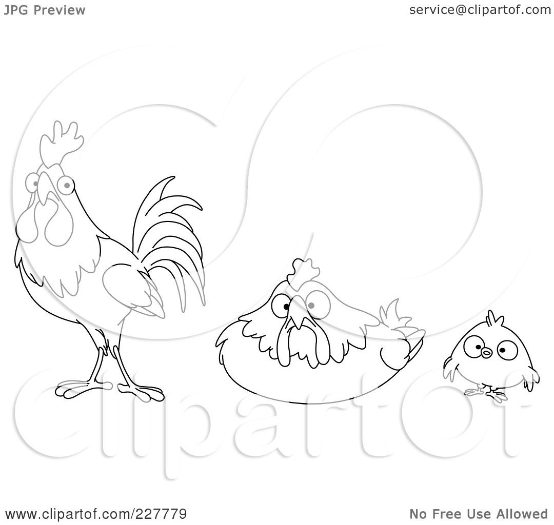 pin hens and roosters pattern package world of patterns on pinterest