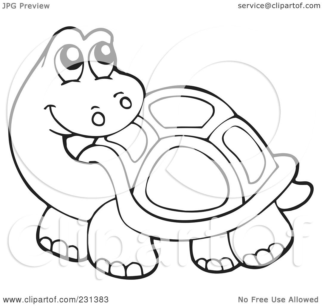 food web coloring pages contegri com