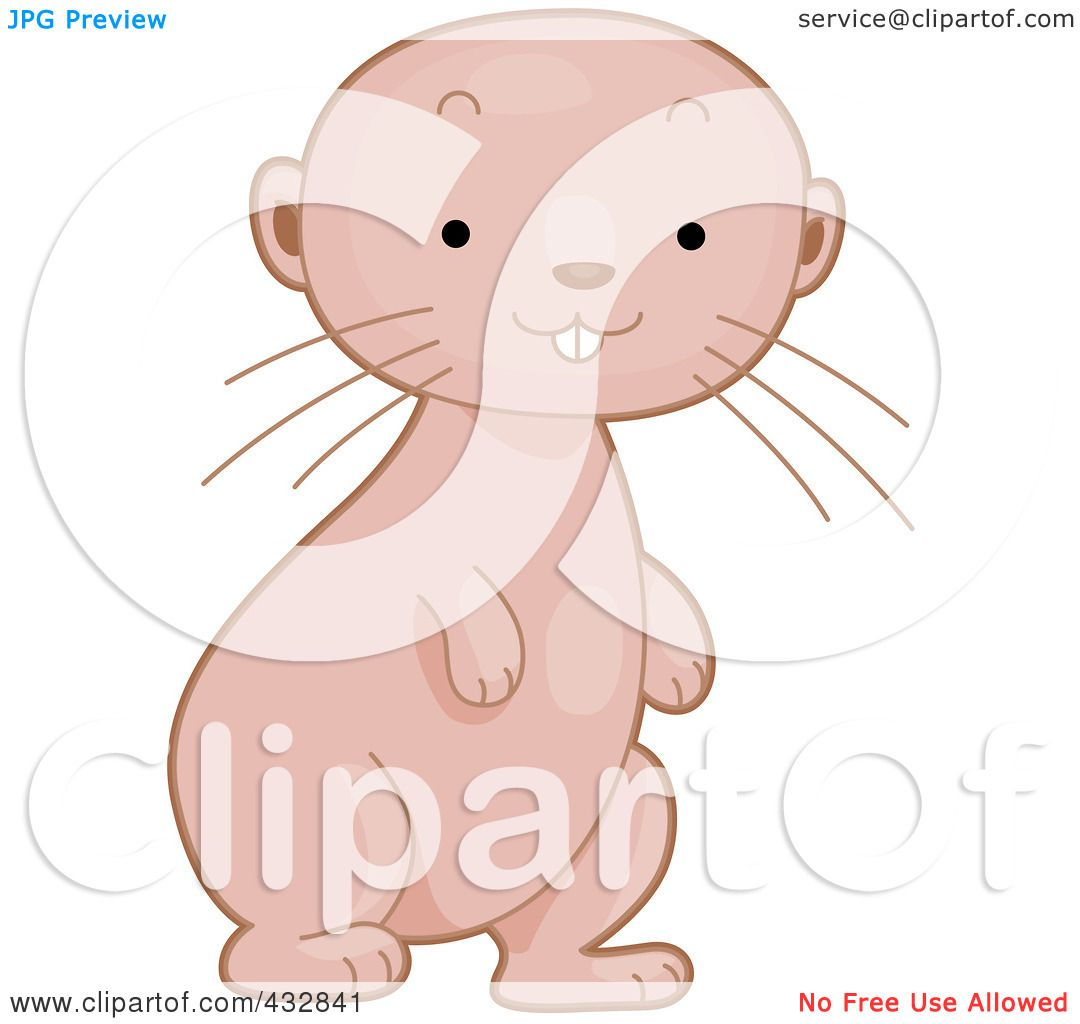 royalty free rf clipart illustration of a cute baby naked mole rat standing by bnp design studio