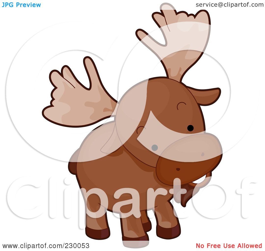 Moose Drawing Cute of a Cute Curious Moose by
