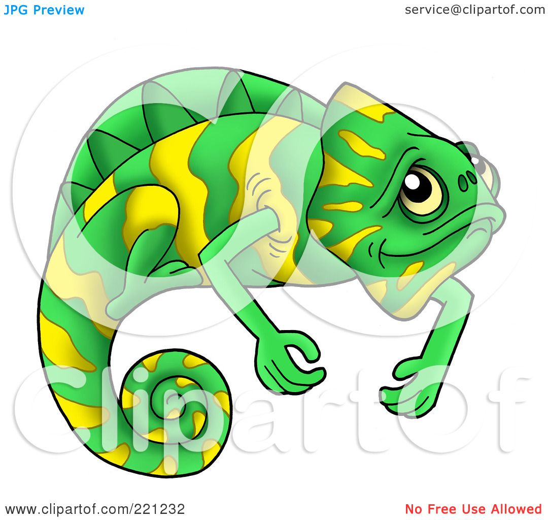 related cute chameleon clipart colorful chameleon clipart chameleon ...
