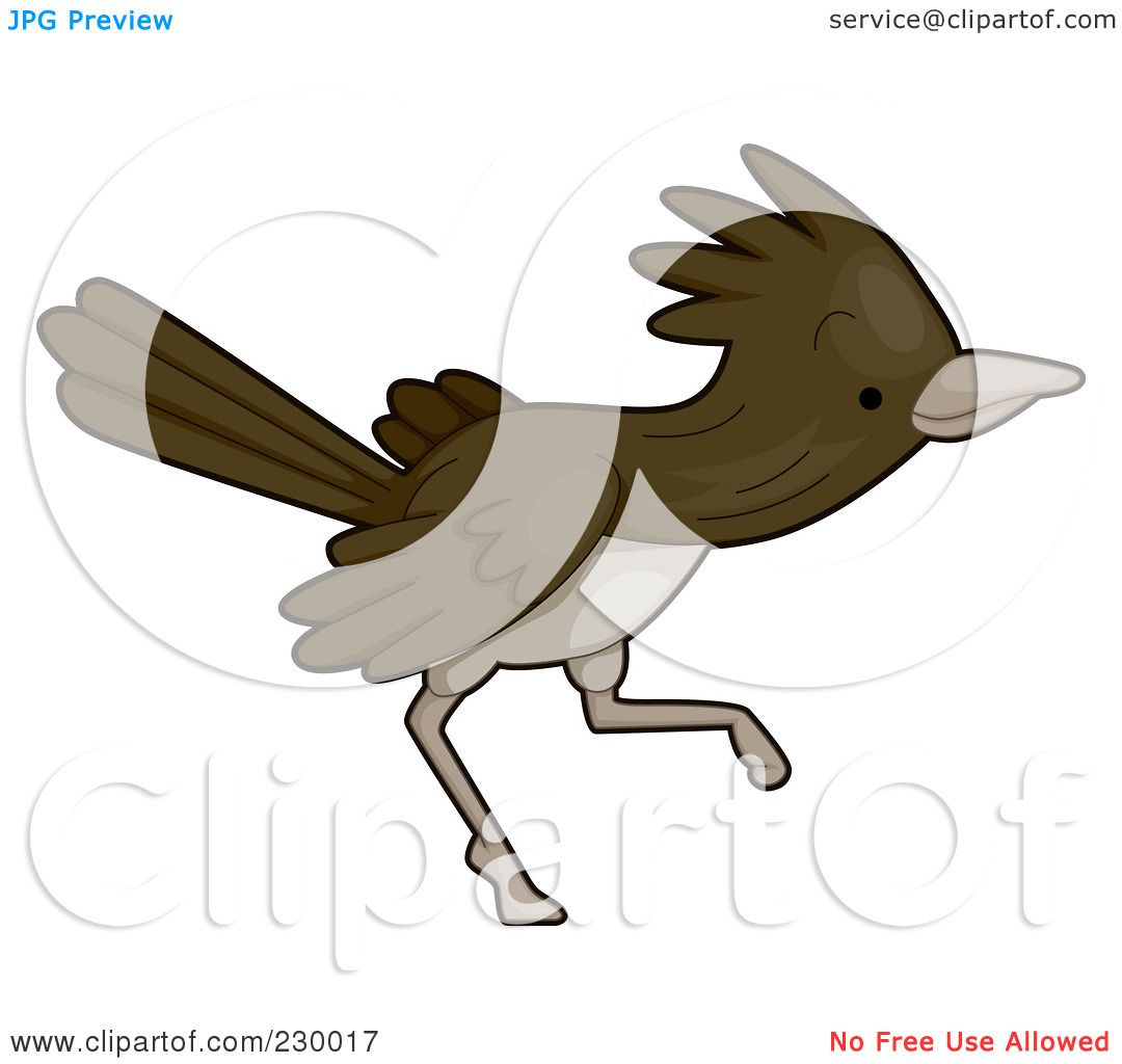 Royalty-Free (RF) Clipart Illustration of a Cute Roadrunner ...