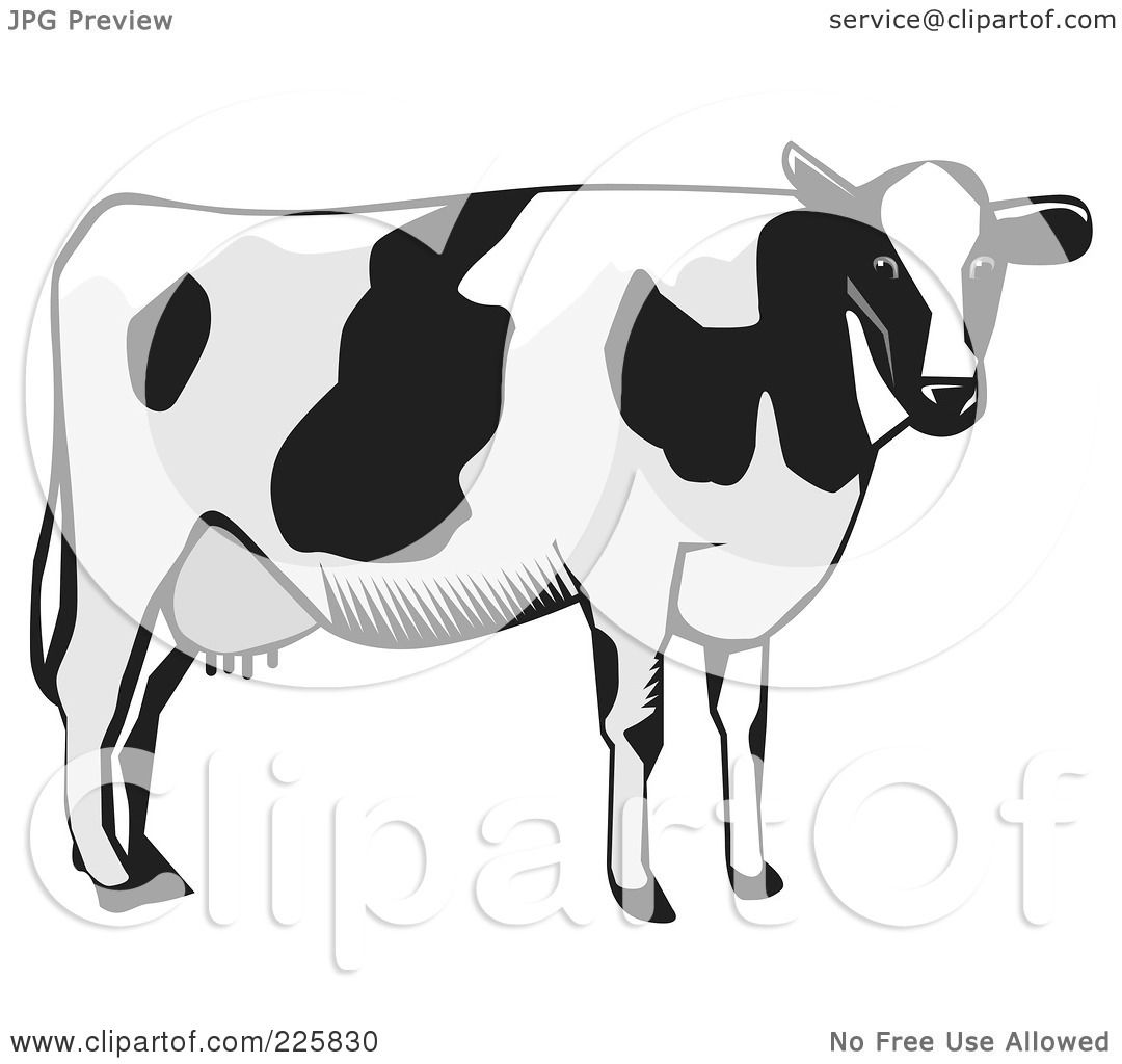 Dairy Cow Silhouette Clip Art Images & Pictures - Becuo