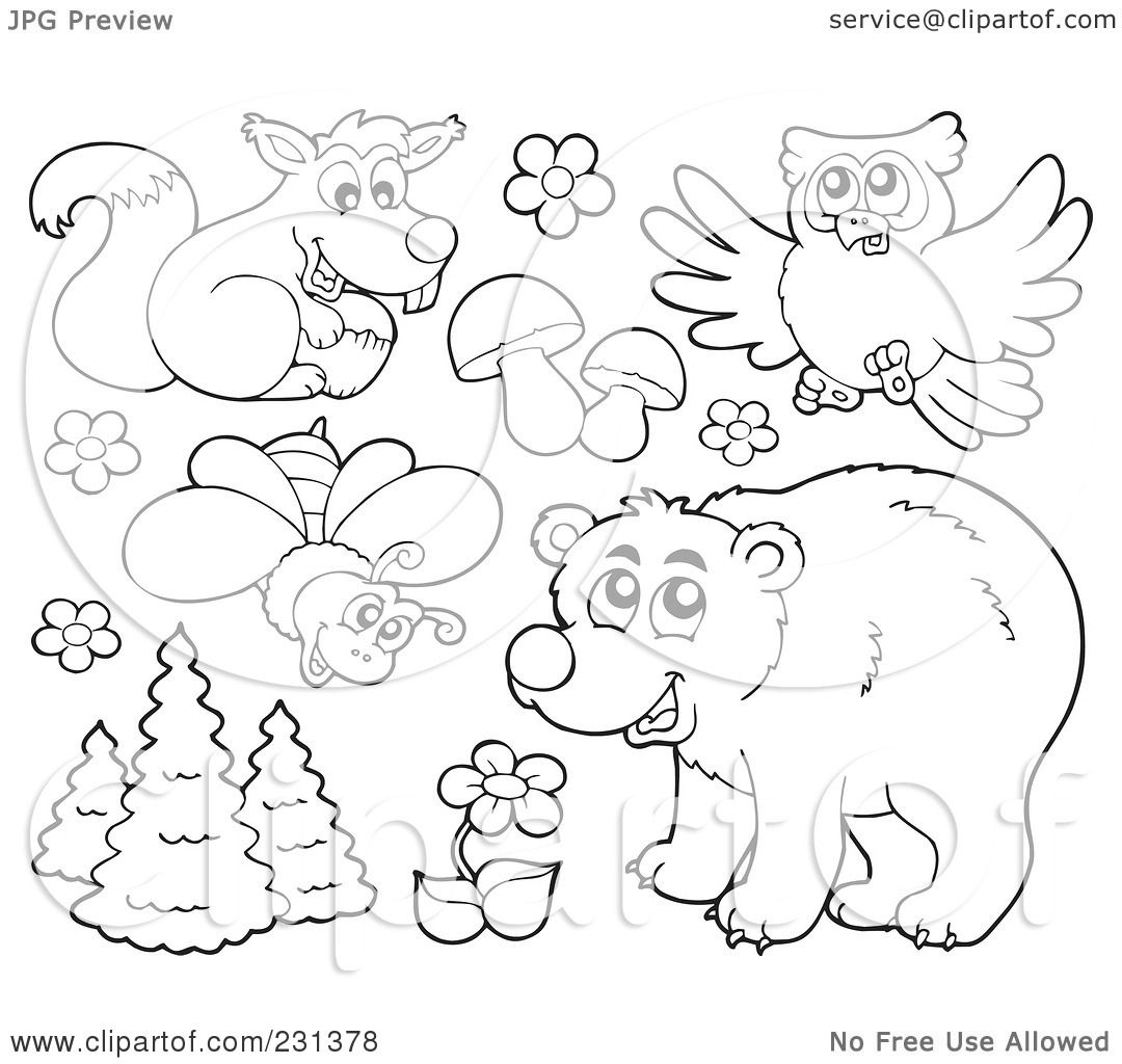 Forest animals coloring book amazing wallpapers Woodland animals coloring book