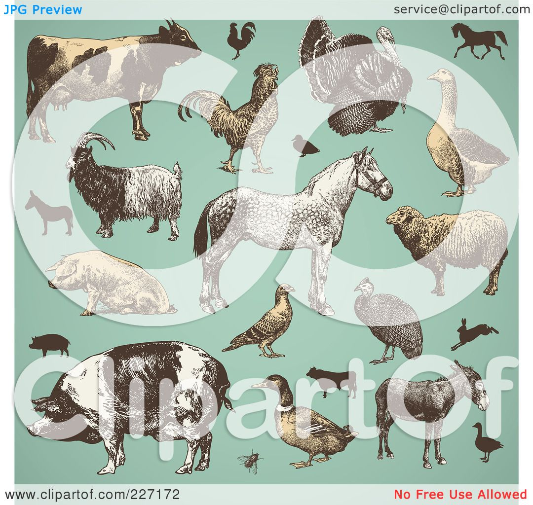 Royalty Free RF Clipart Illustration Of A Digital Collage Vintage Farm Animals And Livestock On Turquoise By Anja Kaiser