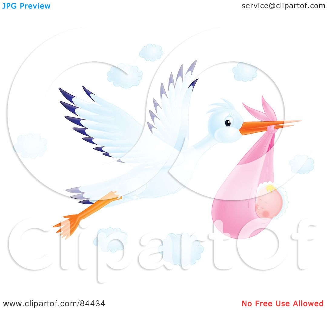 Royalty  Free RF Clipart  Illustration  Of A Flying  Airbrushed  Stork  With A Baby  Girl
