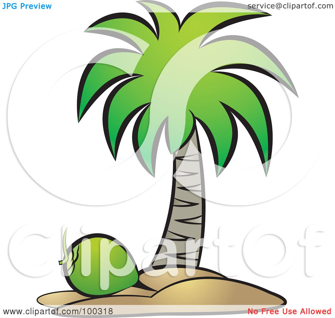 Royalty-Free (RF) Clipart Illustration of a Green Coconut Below A ...