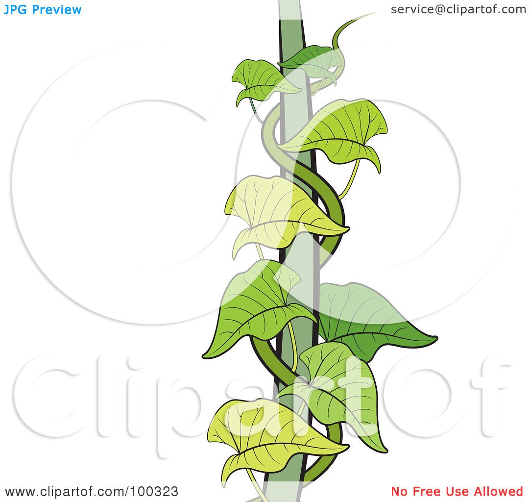 Royalty Free RF Clipart Illustration Of A Green Creeper