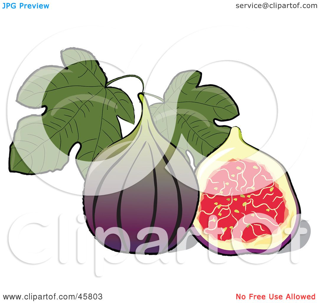 Royalty free rf clipart illustration of a halved and - Clipart illustration ...