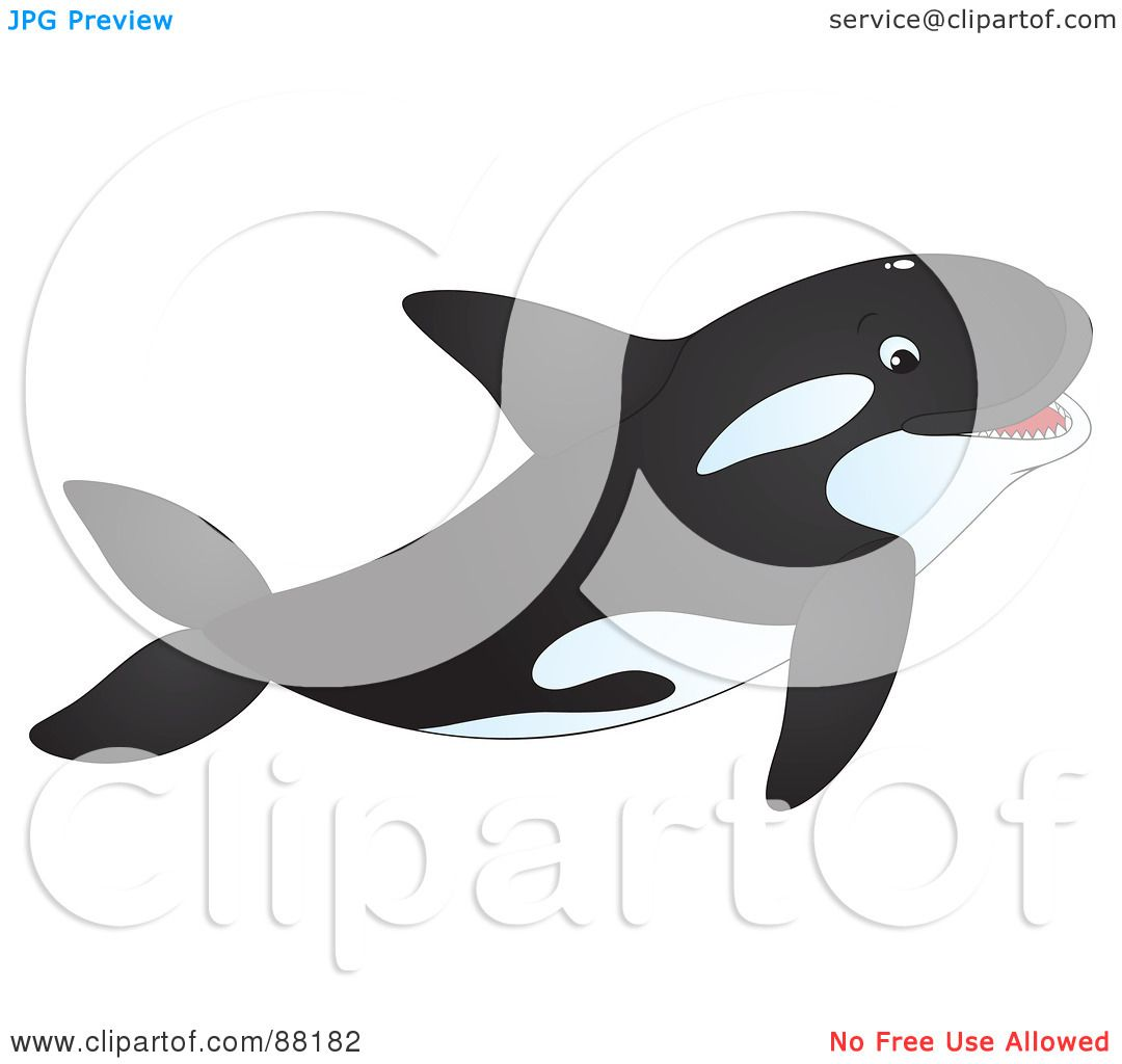 Royalty-Free (RF) Clipart Illustration of a Happy Orca Whale ...