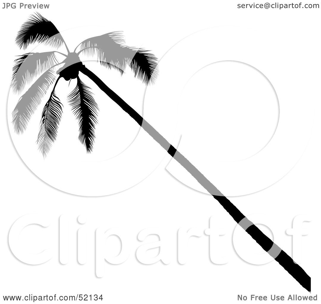 Royalty-Free (RF) Clipart Illustration of a Leaning Palm ...