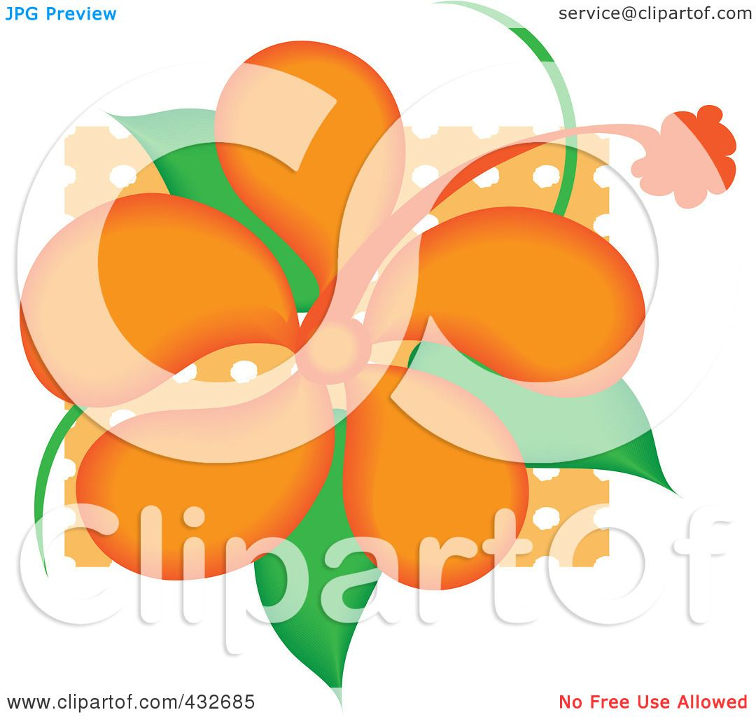Royalty Free Rf Clipart Illustration Of A Pretty Orange Hibiscus
