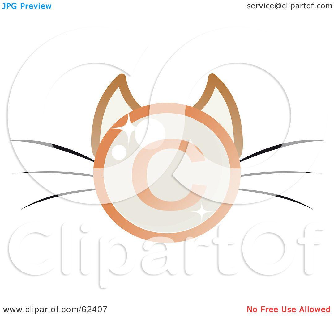 Transparent Cat Face