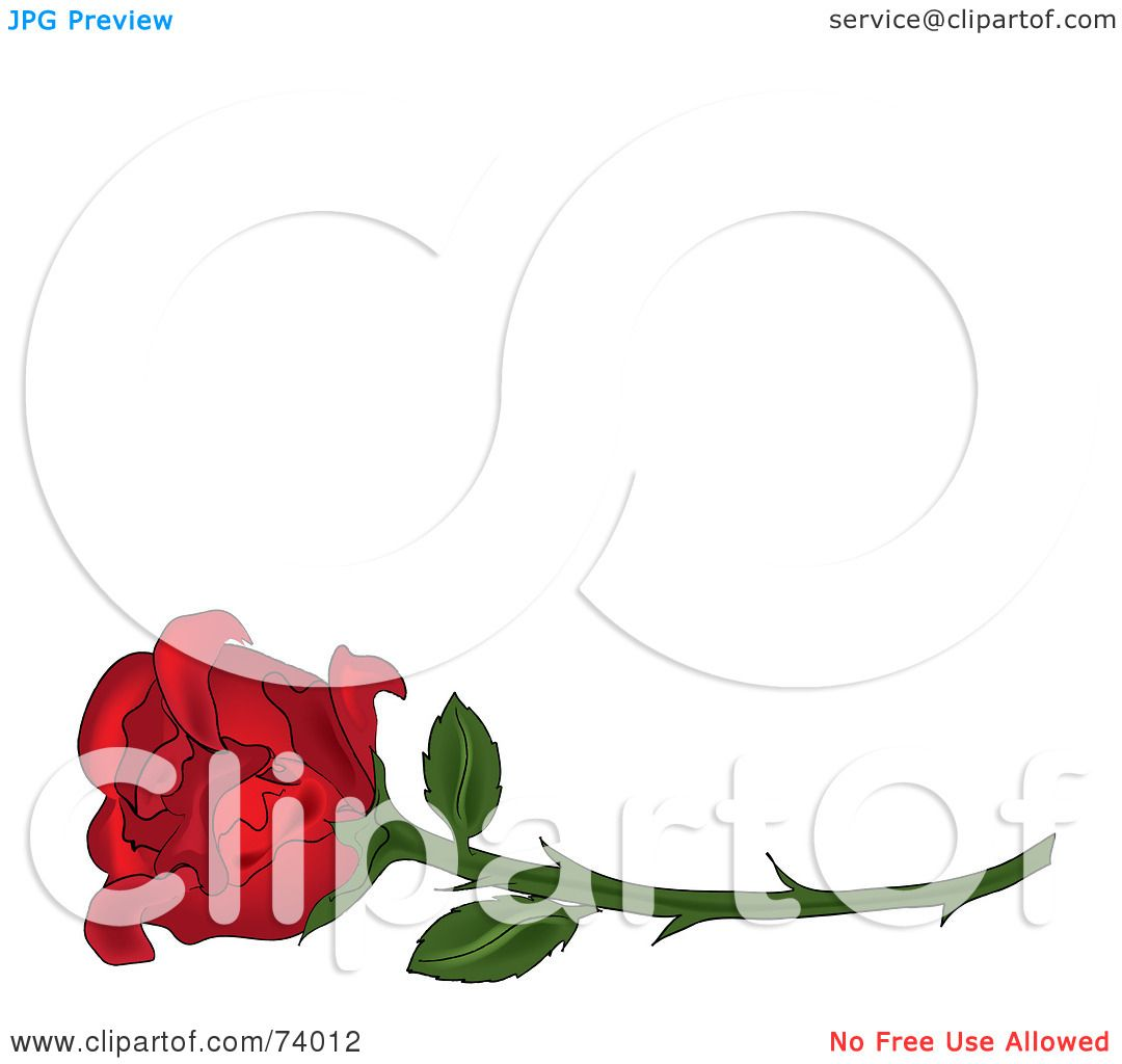 Royalty-Free (RF) Clipart Illustration of a Single Red Rose On A ...