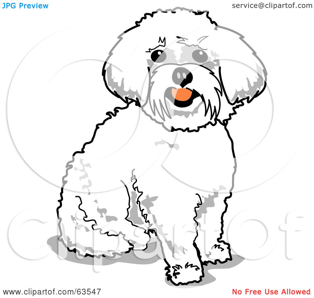 royalty free  rf  clipart illustration of a sitting happy maltese poodle clipart maltese dog clipart