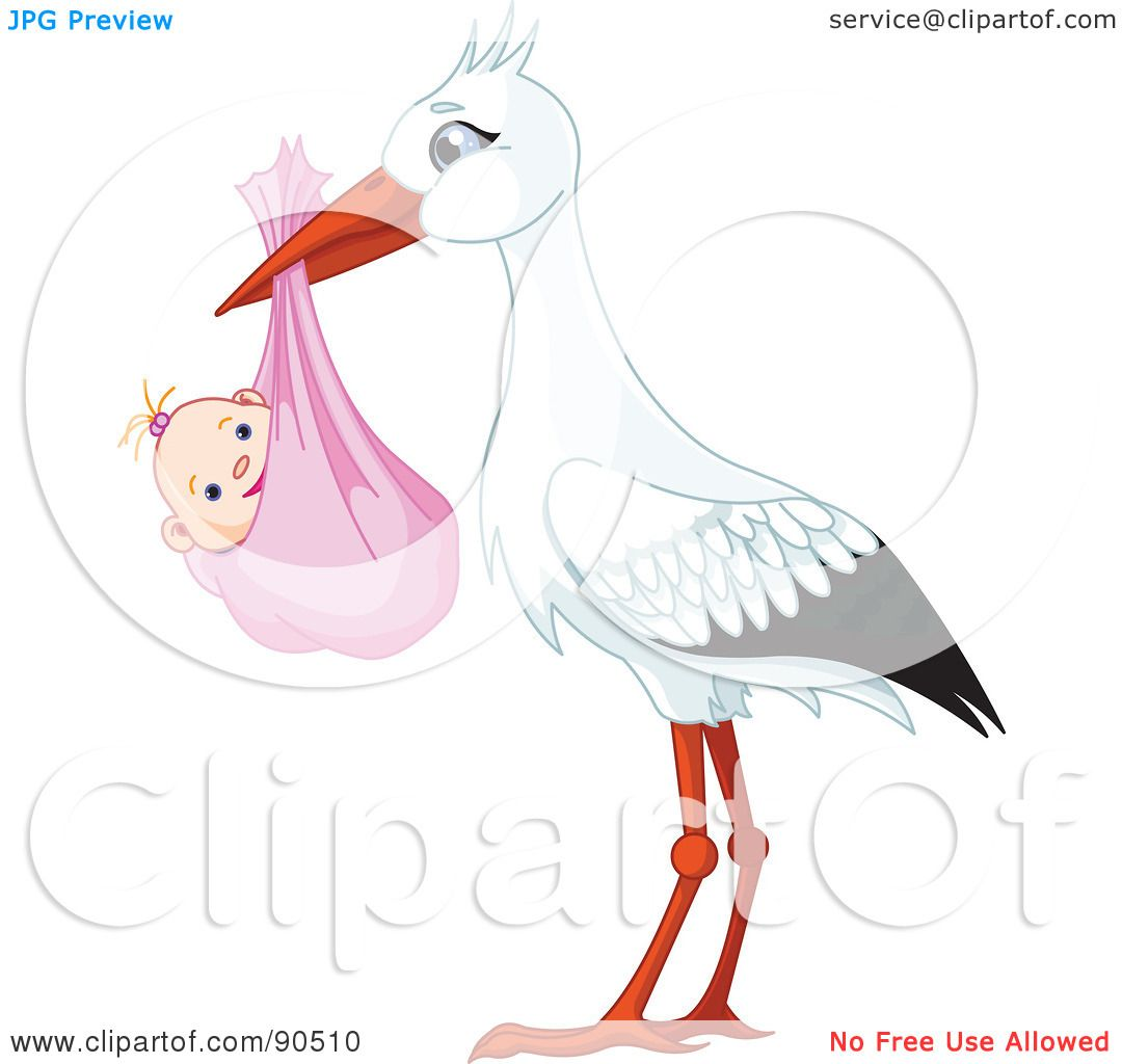 Royalty-Free (RF) Clipart Illustration of a White And Black Stork ...