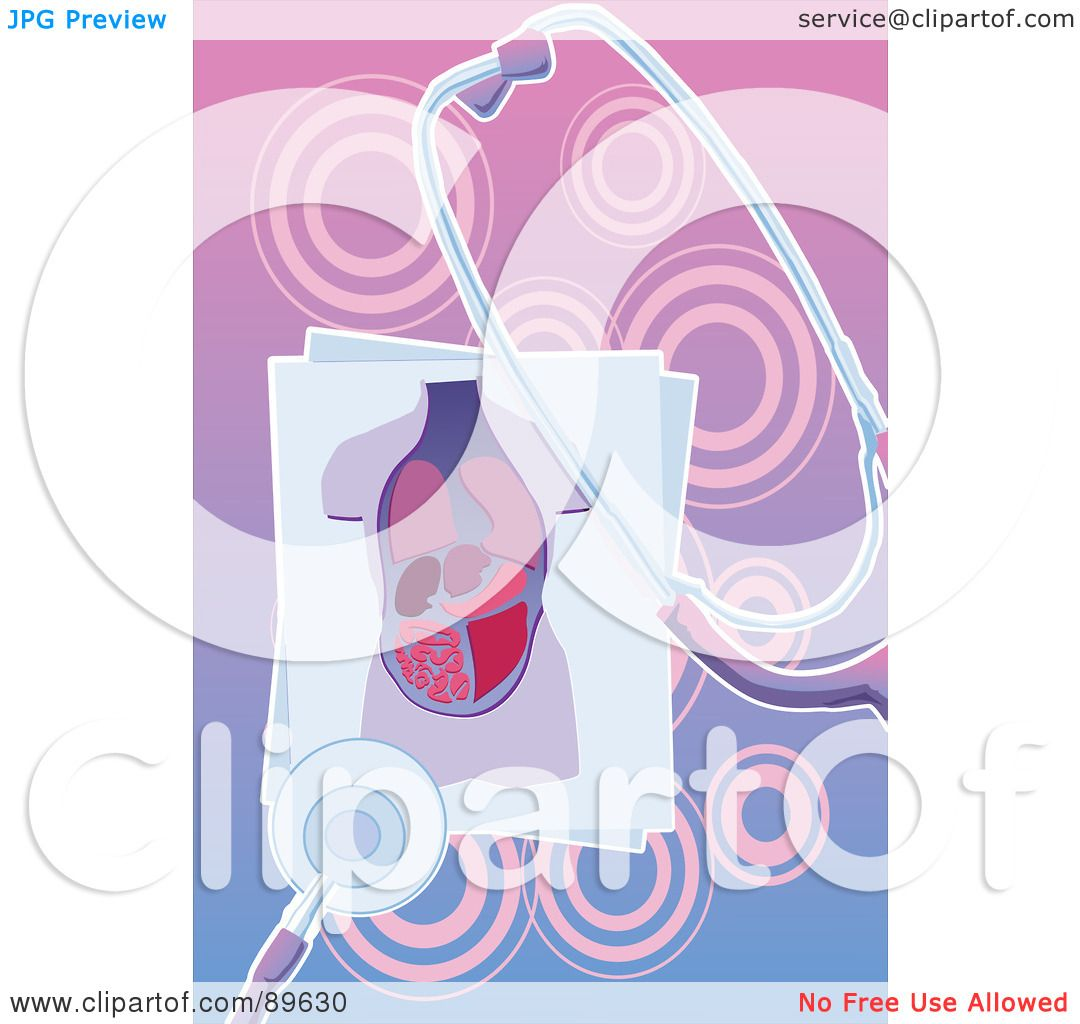 Royalty Free Rf Clipart Illustration Of An Organ Body Chart With A