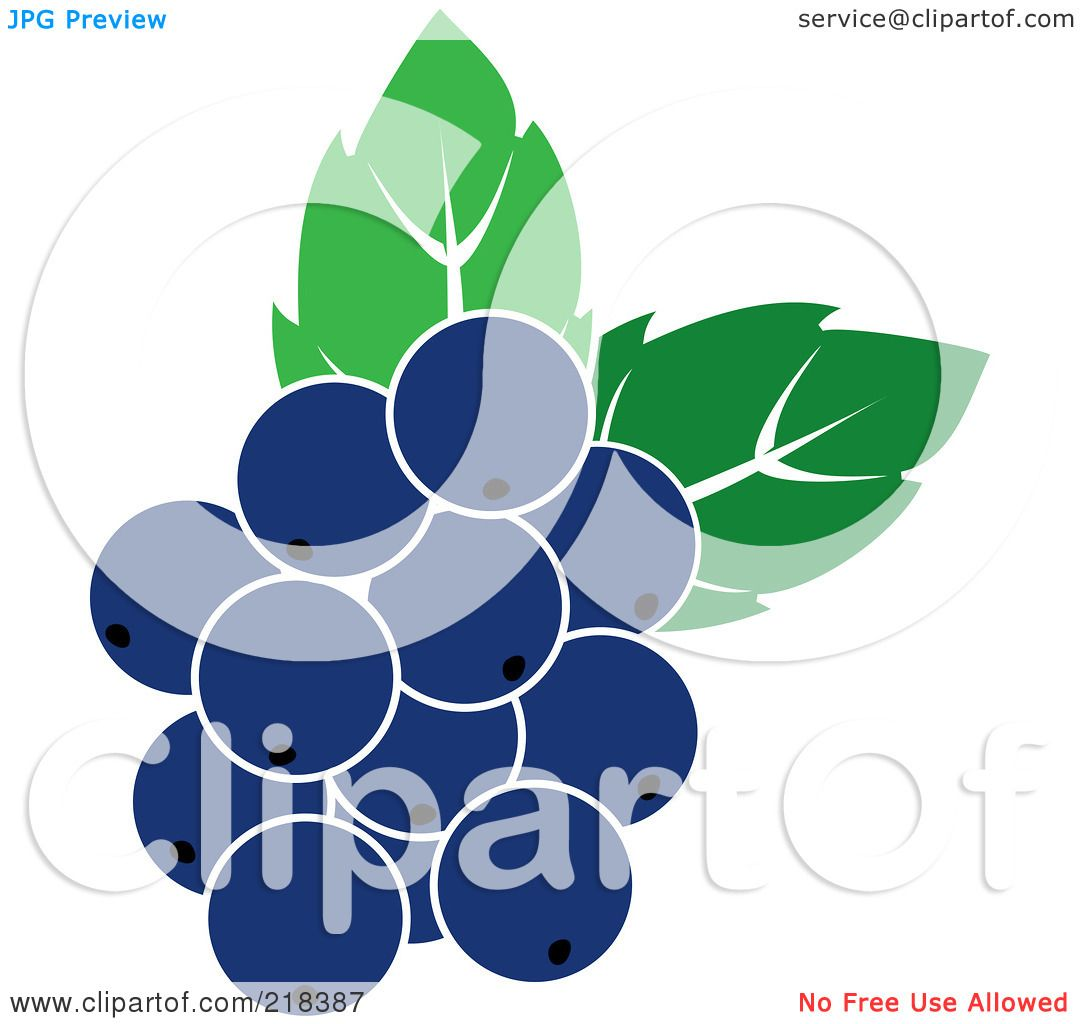 Royalty-Free (RF) Clipart Illustration of Blueberries With Leaves ...