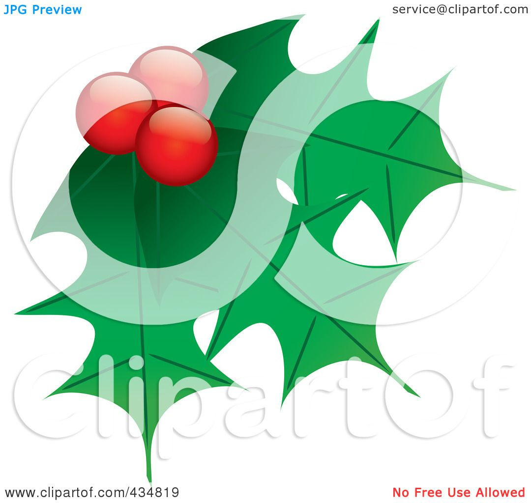 Holly Leaves And Berries Clip Art Royalty-free (rf) clipart