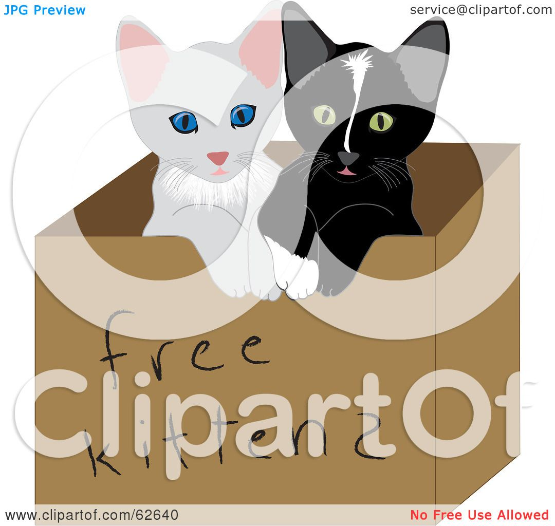 Royalty Free RF Clipart Illustration of Two Cute Baby Kitties In