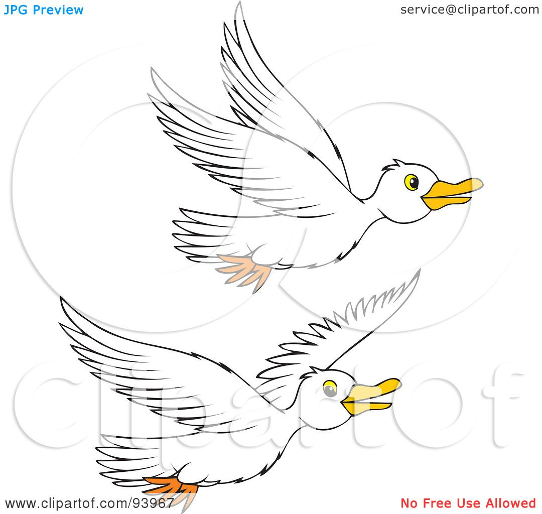 Royalty-Free (RF) Clipart Illustration of Two Flying White Geese ...