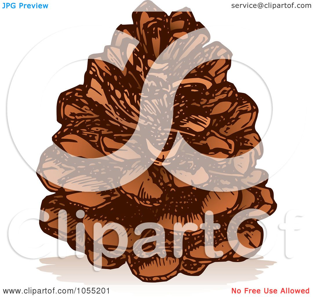 Royalty-Free Vector Clip Art Illustration of a Pine Cone by Any ...