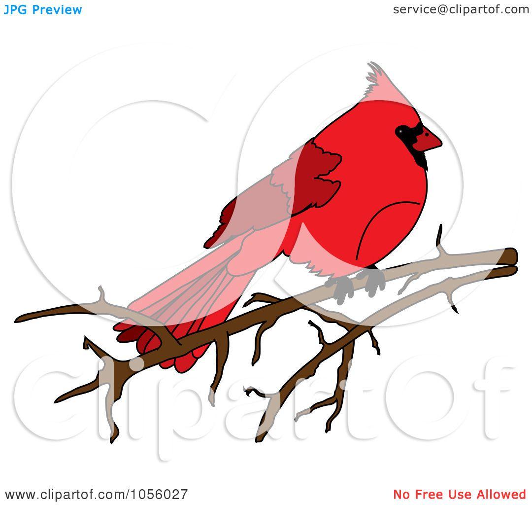 royalty free vector clip art illustration of a red cardinal rh clipartof com free cardinal baseball clipart Free Cardinal Silhouette