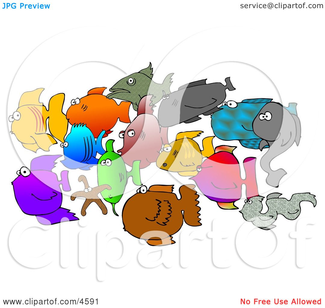 School-Of-Saltwater-Fish-And-Starfish-Clipart-10244591.jpg