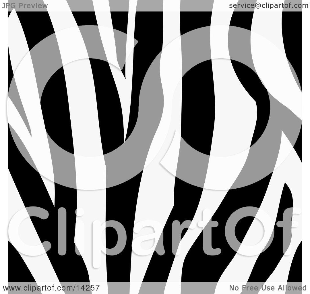 Zebra Animal Print Background With a Black and White Stripes ...