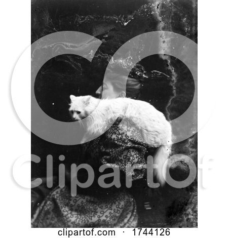 Antique Photo of a Woman with a Cat on Her Shoulder by JVPD